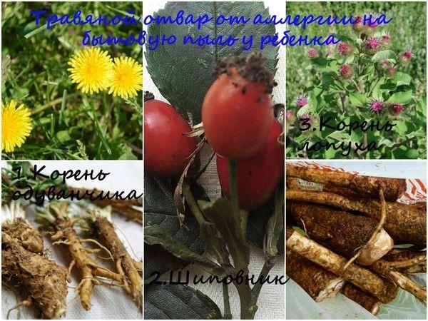 Трав`яний відвар від алергії