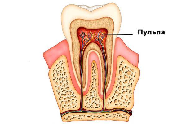 Яким чином зуб реагує на холодне і гаряче