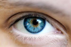 Стовбурові клітини, виділені з пульпи зуба, рятують очі