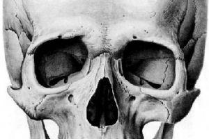 У древніх було менше проблем з зубами
