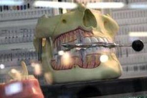 У листопаді в самарі пройде щорічна стоматологічна виставка «дентал-експо»